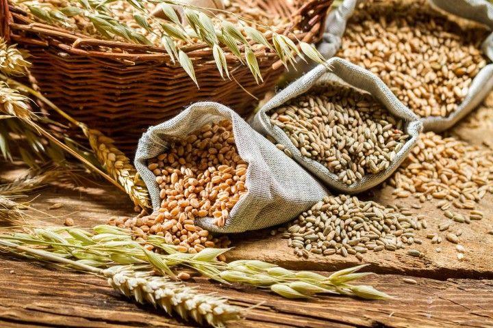 La Fibra esencial para una vida saludable cereales