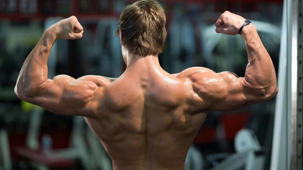 Rutina de ejercicios para aumentar el volumen de hombro, pecho y espalda