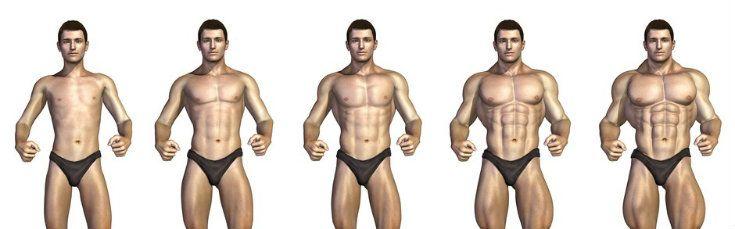 cuanto para aumentar mi masa muscular