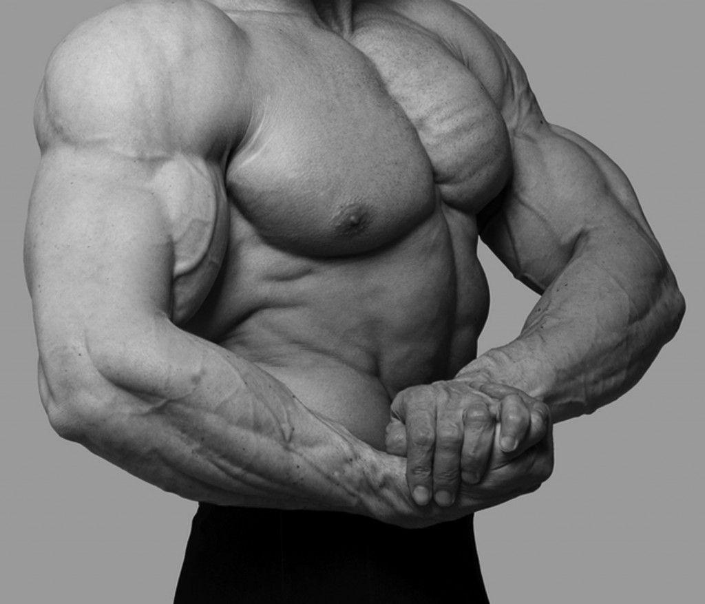 Masa muscular en los brazos