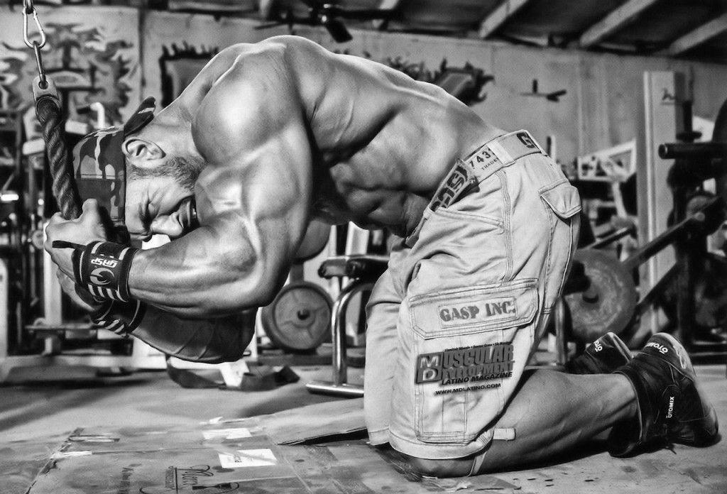 Los músculos – mitos y realidades central