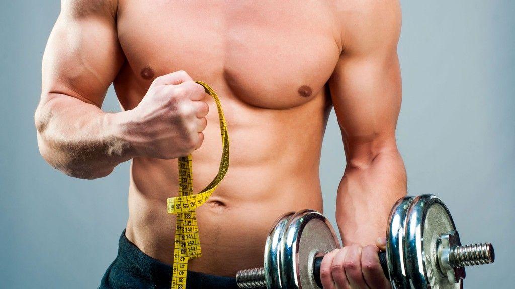 masa muscular 2
