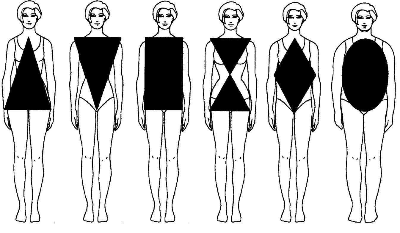 tipo de cuerpos