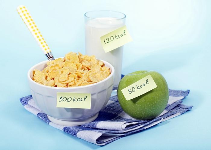 importante tipos de calorías.